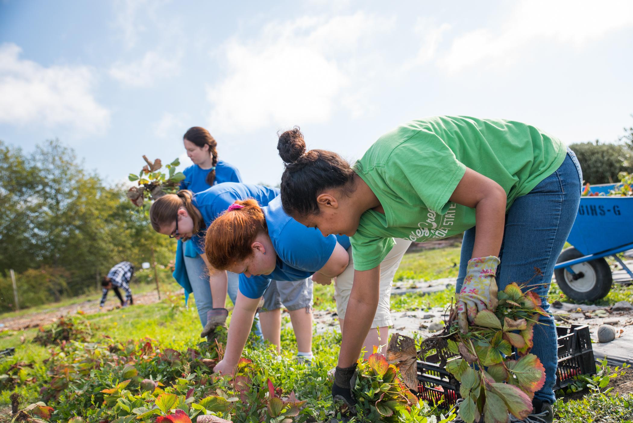 volunteers at potowat garden
