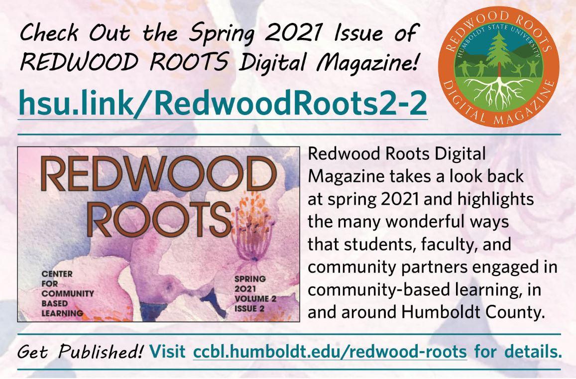 hsu.link//RedwoodRoots2-2